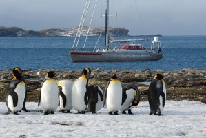 COLD SHIVER: CRUISES TO THE SOUTH